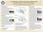A Comparative Study of the Murray/Taylorsville and Salt Lake City Greenway Systems