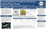 Combating Obesity Through Gut Microbiome Targeted Bacteriophage Therapy