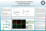 Understanding Drug Addiction Through Optogenetics by D. Bird, Scott Kent Brown III, T. Hastings, and J. Edwards