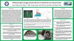 Holding Strength of Quagga and Zebra Mussels on Substrate by Use of Byssal Threads