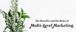 The Benefits and the Risks of Multi-Level Marketing by Jacob Thorpe